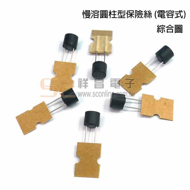 0.1A慢溶圓柱型保險絲(電容式)