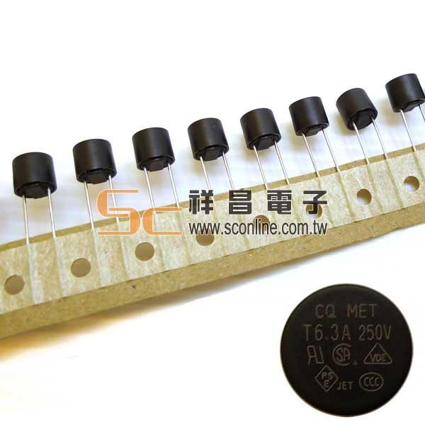 6.3A 250V慢溶圓柱型保險絲 (電容式)