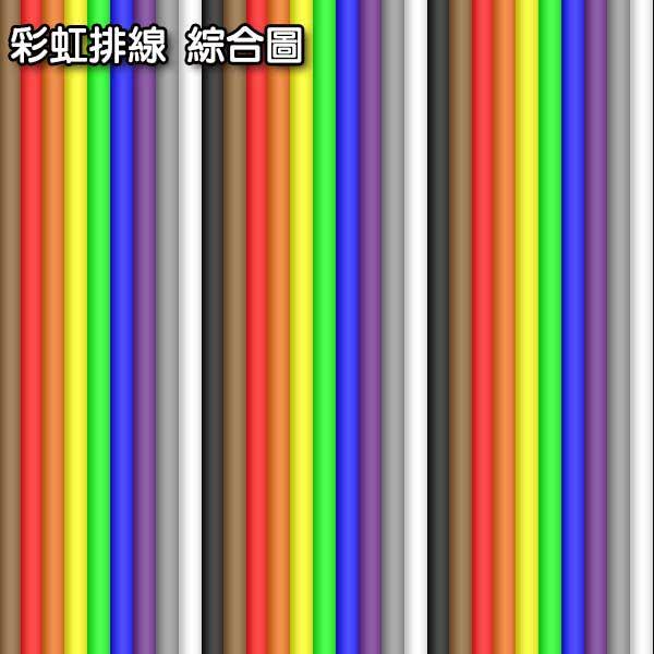 60P 彩虹排線 1FT (零剪線)